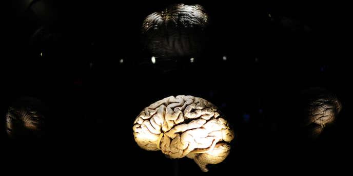 Au-delà d'un certain seuil, et notamment en cas d'exposition pré-natale, le méthylmercure provoque des troubles cognitifs et un retard mental.
