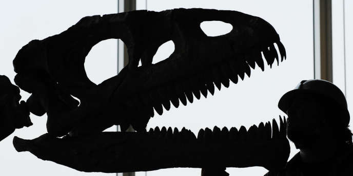 L'extinction des dinosaures avait été liée la première fois à la chute d'un astéroïde en 1980 par le professeur de science planétaire de l'université de Berkeley Luis Alvarez, aujourd'hui décédé, et son fils Walter.