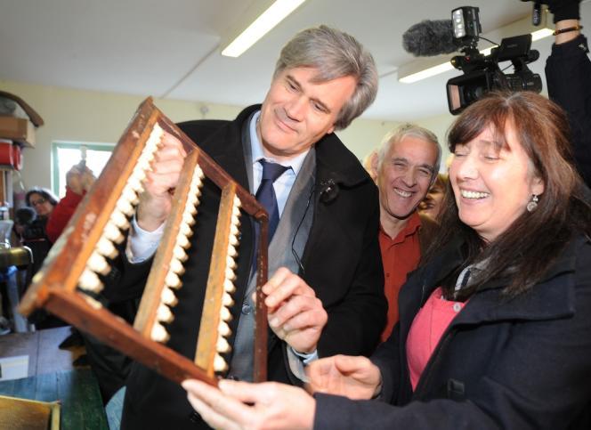 Stéphane Le Foll, ministre de l'agriculture, lors de sa visite d'une ferme apicole au Grand-Lucé (Sarthe), le 8 février.