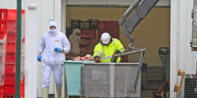 Sur 4 144 tests ADN menés dans toute l'Europe, à la suite du scandale provoqué par la découverte de viande de cheval, 193 se sont révélés positifs.
