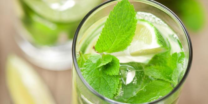 Conçu à partir de rhum et de menthe, le mojito est le cocktail préféré des Français, rapporte une étude de la société Nielsen, publiée lundi 18 février.