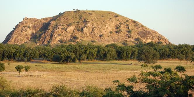 Les sept Français revenaient du parc naturel de Waza, dans le nord du Cameroun, quand ils ont été enlevés.