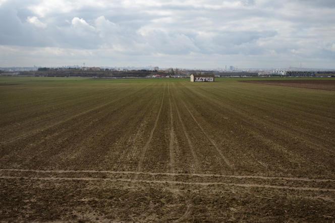 Les champs du triangle de Gonesse, à une quinzaine de kilomètres de Paris, au loin.