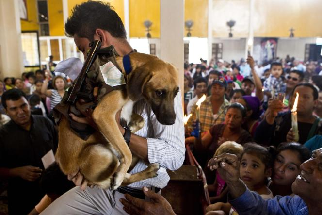 Un homme tient un chien sur lequel a été fixée une photo de Hugo Chavez, lors d'une cérémonie de bénédiction d'animaux en l'honneur de saint Lazare, à Masaya, au Nicaragua, le 17 mars.