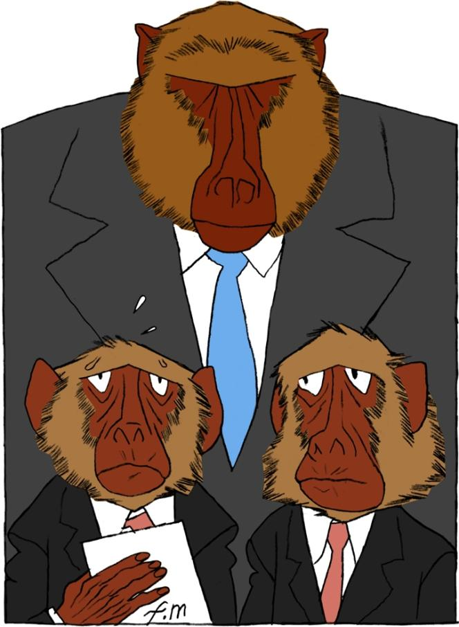 Face à la pression, le comportement des singes est différent selon leur rang, montre une étude britannique.