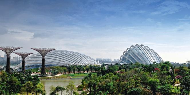 Avec ses gigantesques dômes de verre et ses impressionnants Supertrees, ce jardin de 54 hectares se veut à la fois pédagogique et ludique.