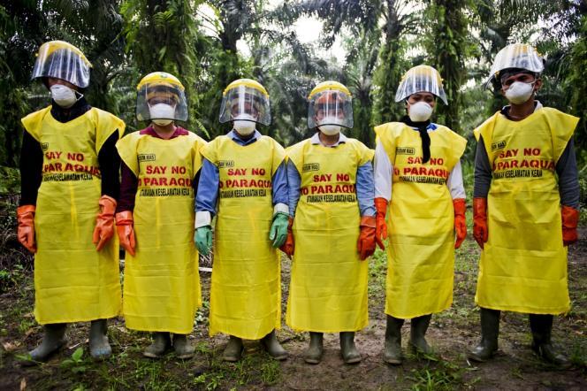 Des travailleurs d'une plantation à Java portent sur leur vêtement de protection l'inscription