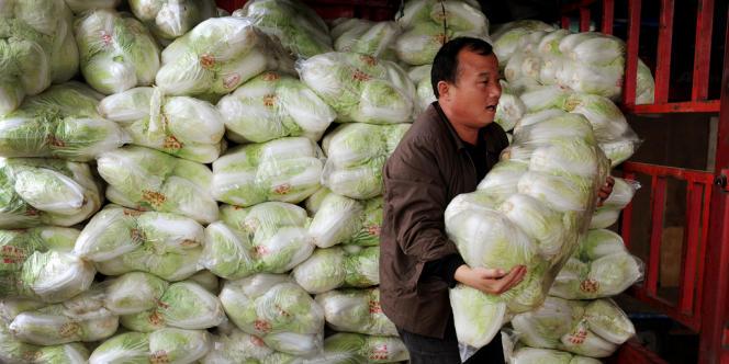 Des maraîchers chinois ont enduit des choux de formol pour éviter que les légumes ne s'abîment durant les longs trajets dans des camions non réfrigérés.