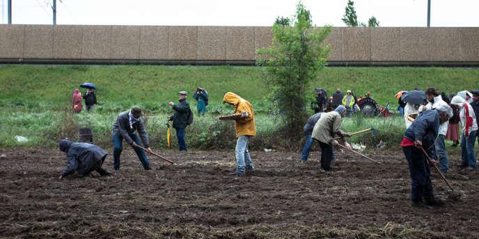 A Avignon, Reclaim the fields et le collectif LeoPart ont organisé la plantation d'un champ de pommes de terre en protestation contre le passage prévu d'une route dans une zone d'agriculture péri-urbaine.