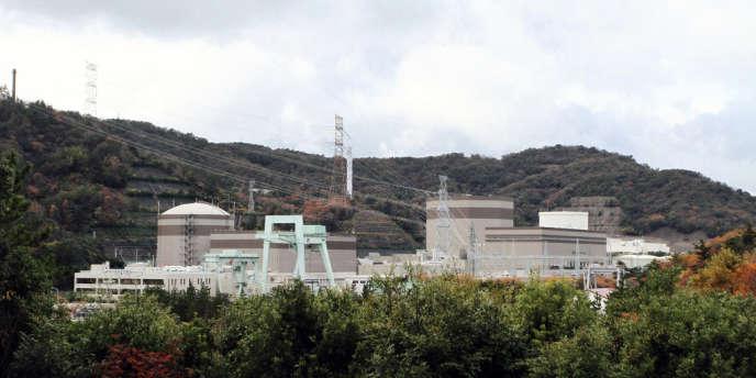 Le réacteur de Tsuruga ne date que de 1987 et pourrait en théorie fonctionner encore au moins une quinzaine d'années. La centrale en possède un autre, également à l'arrêt.