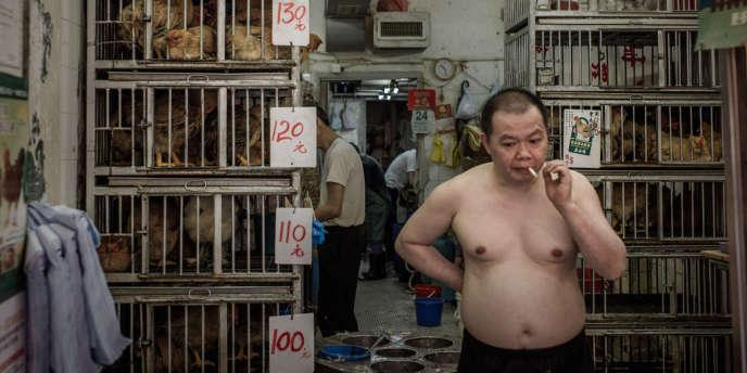 Dans un marché aux volailles à Hongkong, le 24 mai. Selon un rapport de l'université de Hongkong, le virus H7N9 n'est transmissible à l'homme que par voie aérienne, en de contacts rapprochés.