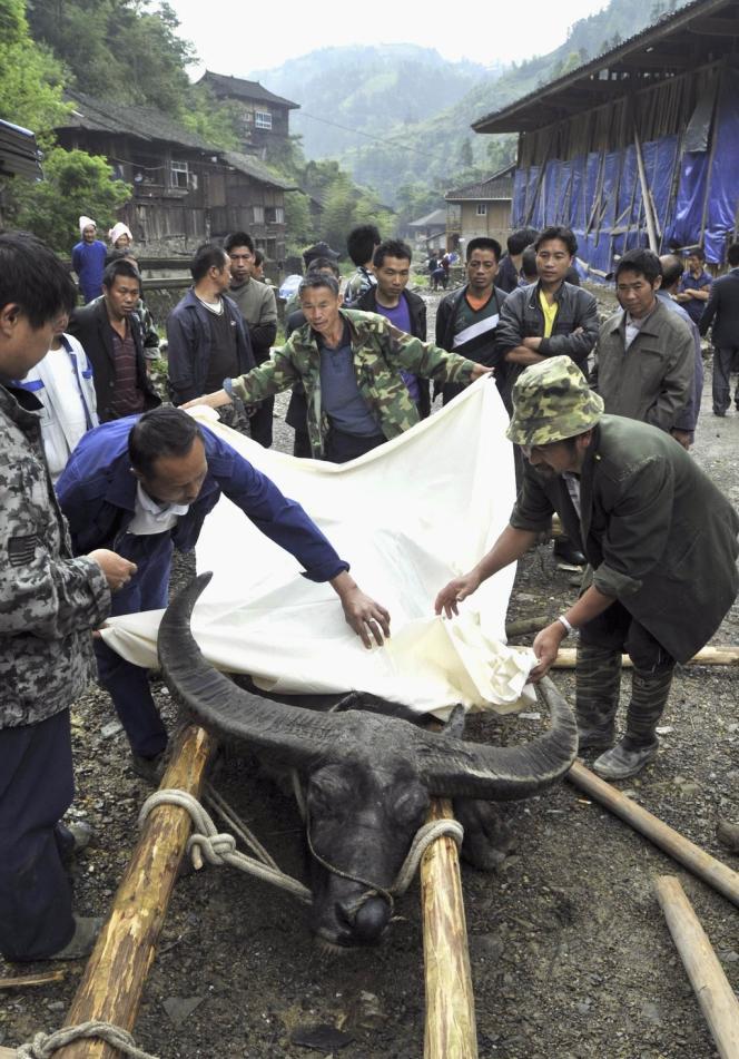 Après sa mort, des villageois de la province de Guizhou, en Chine, honorent celui qu'ils surnomment