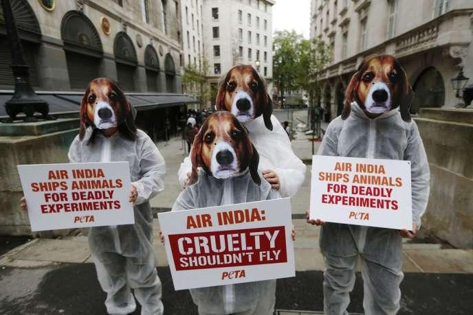 Manifestation à Londres, le 30 mai 2012, contre le convoi d'animaux par la compagnie aérienne Air India vers des laboratoires d'expérimentation.