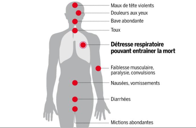 Symptômes provoqués par le gaz sarin