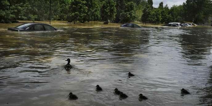 Les inondations qui touchent l'Europe ont fait de nombreuses victimes.