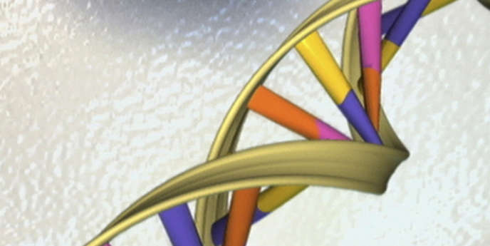 Vue d'artiste de l'ADN, publiée par l'Institut national de recherche sur le génome humain.