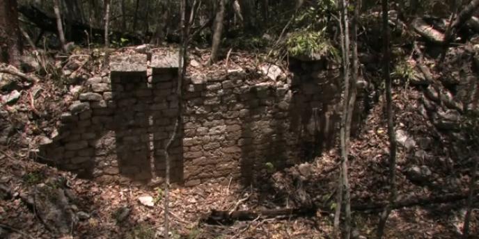 Une cité maya a été découverte dans l'Etat mexicain de Campeche.