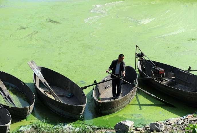 Le lac de Chaohu, à Hefei, le 4 juin.