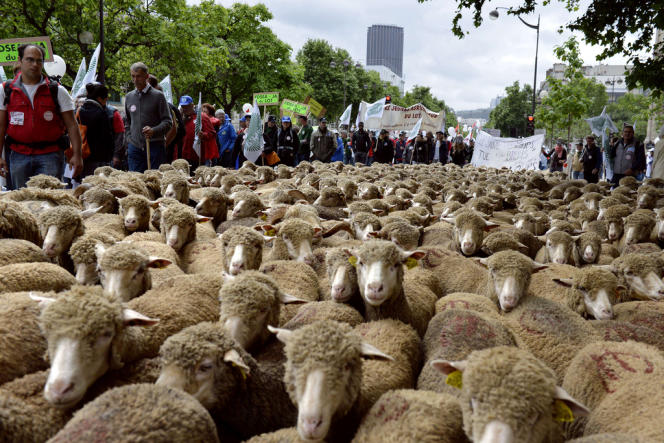Manifestation des éleveurs à Paris, dimanche 23 juin.