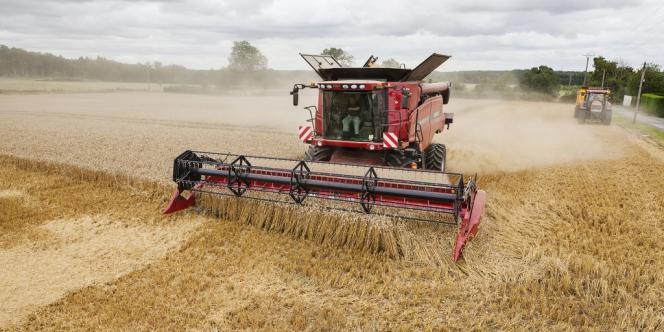 « Les prix des céréales devraient continuer de baisser encore un an ou deux avant de se stabiliser », avancent les experts des Nations unies dans un rapport sur l'agriculture mondiale des dix prochaines années, publié vendredi 11 juillet.