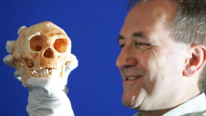 Moulage du crâne de l'homme de Florès.