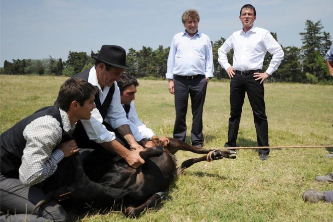 Manuel Valls a participé à une ferrade dans le Gard, samedi 13 juillet.