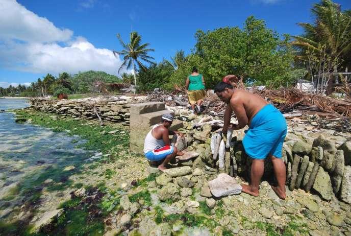 Des habitants de l'archipel des Kiribati édifient des murs, à base de récifs coralliens, pour tenter de se protéger contre la montée des eaux.