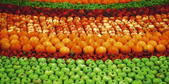 Le 29 juin, le cliché du mandala géant composé de fruits  exposé avant le show Kenzo a fait le buzz (à gauche).