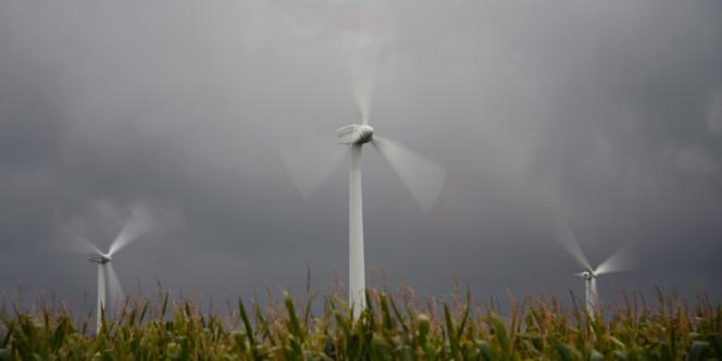 Un champ d'éoliennes à Husum, dans le nord de l'Allemagne, en octobre 2012.