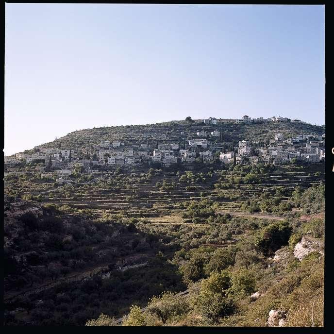 Avec ses cultures en terrasses qui remonteraient au IIIe millénaire avant notre ère, Battir est réputé pour ses vergers et potagers.