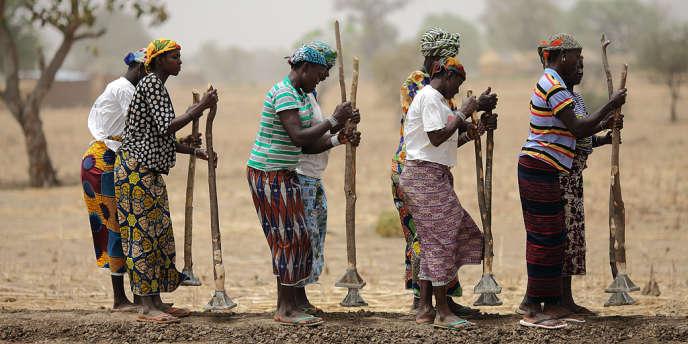 Construction de digues près de Diapaga, au Burkina Faso, soutenue par l'ONG Action contre la Faim. Selon un rapport de l'Organisation des Nations unies pour l'alimentation et l'agriculture, le nombre de sous-alimentés a baissé de 17 % depuis le début des années 1990.