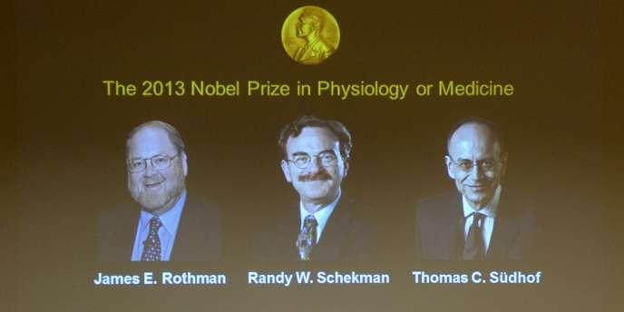 Le prix Nobel de médecine a été attribué conjointement aux Américains James Rothman (université de Yale) et Randy Sheckman (Berkeley), et à l'Allemand Thomas Südhof (Stanford).