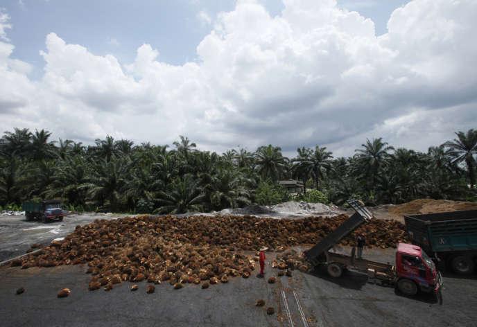 Site de fabrication d'huile de palme, à Sepang, près de Kuala Lumpur.