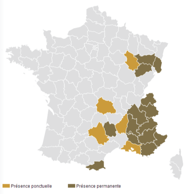 La carte du territoire des loups en France