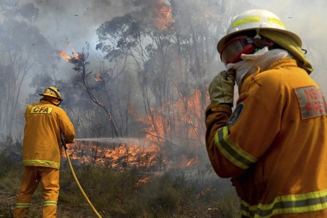 L'Australie subit ses pires feux de brousse depuis quarante-cinq ans, qui menacent la banlieue de Sydney, la ville la plus peuplée du pays. Ici, les pompiers à la lutte, lundi 21 octobre.