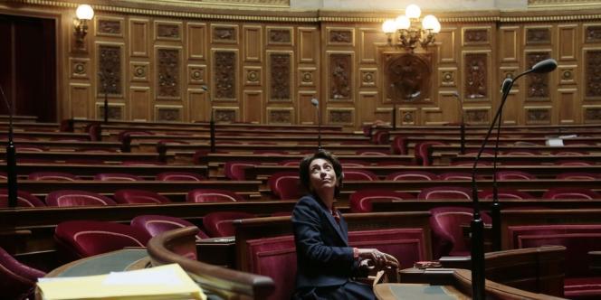Marisol Touraine au Sénat, le 28 octobre 2013.