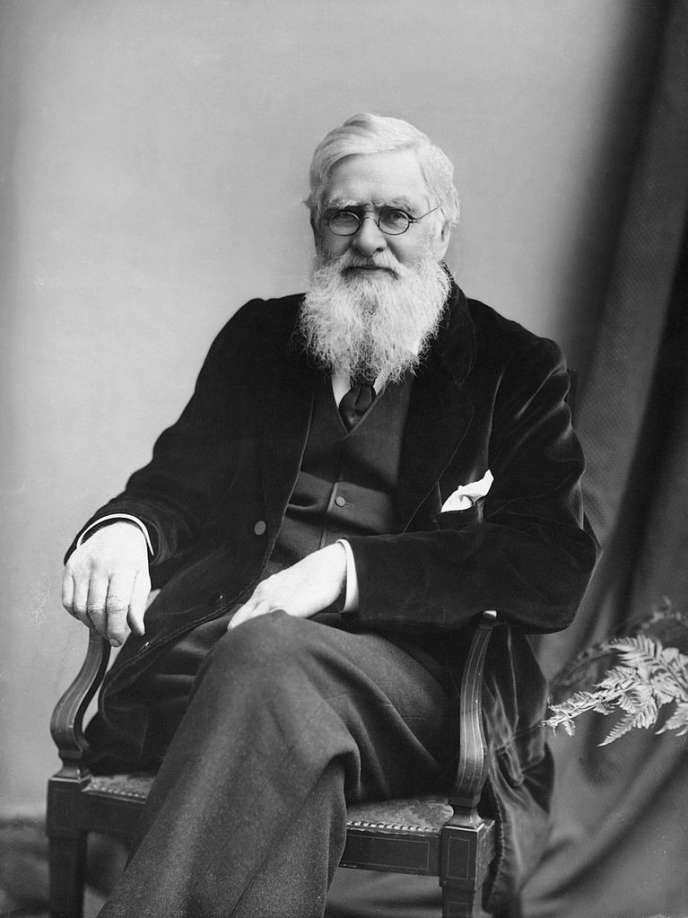 Alfred Wallace, vers 1895.