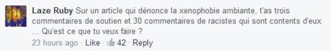 Exemple de commentaire tiré de la page Facebook du Monde.fr.