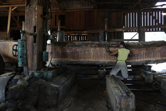Bois extrait illégalement de la forêt amazonienne, dans une scierie de l'Etat du Pará.