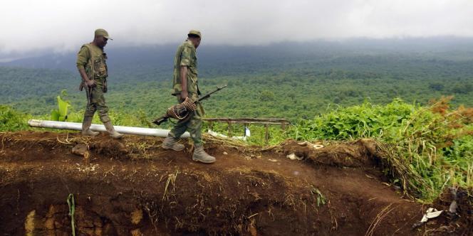 Des militaires congolais inspectent un stock de munitions appartenant au M23.