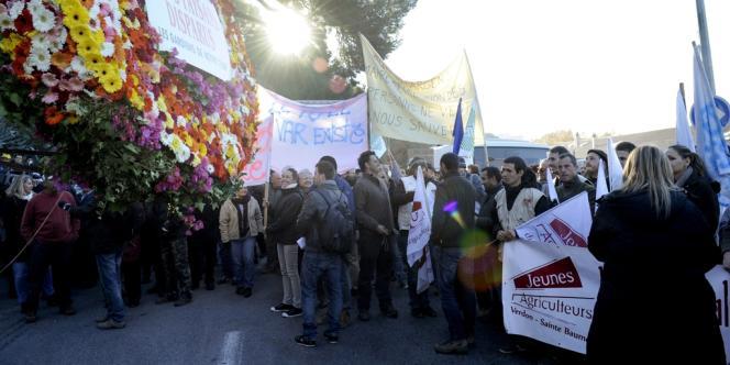 Manifestation d'agriculteurs et d'horticulteurs à Toulon, le 29 novembre 2013.