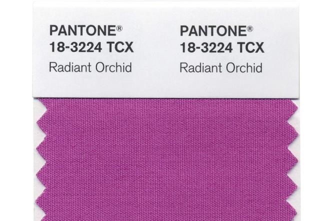 La teinte sélectionnée par Pantone pour 2014 est baptisée Radiant Orchid.