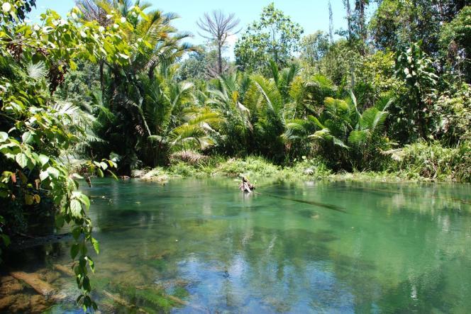 Papouasie-Nouvelle-Guinée, le 16 octobre 2010.