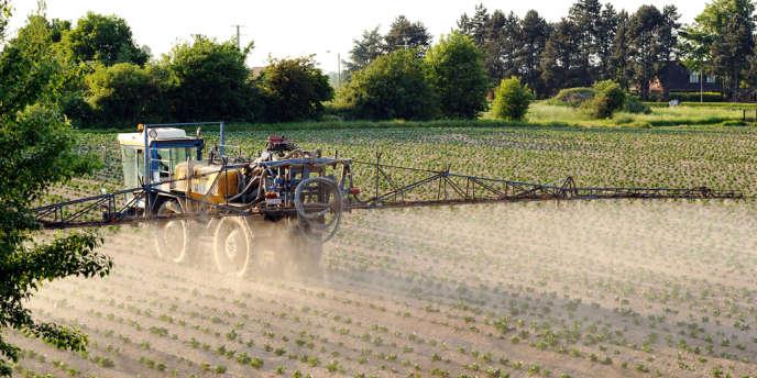 Le recours aux pesticides se serait en réalité accru entre 2011 et 2012.