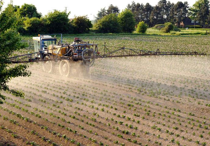 L'arrêté ministériel du 4mai 2017 régissant l'usage des pesticides est contesté devant le Conseil d'Etat.