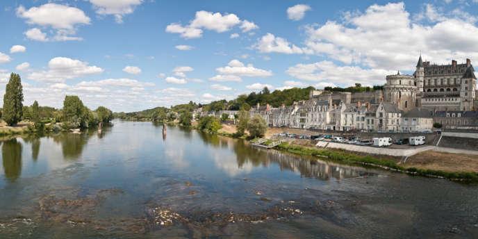 Un peu plus de 800 saumons ont remonté en 2013 la Loire avant de bifurquer vers son affluent l'Allier.