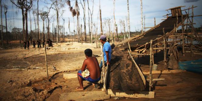 Des mineurs assistent à une opération de police contre l'extraction illégale d'or, en novembre, dans la région de Madre de Dios, au sud-est du Pérou.
