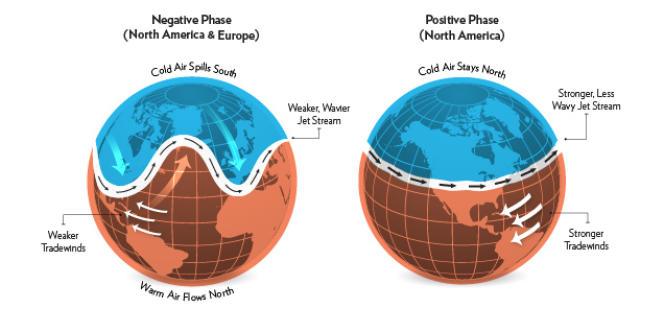 Mouvements du vortex polaire associé à l'oscillation arctique.