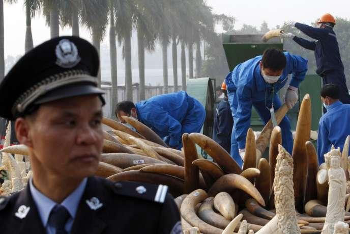 Des travailleurs chinois détruisent une partie du stock d'ivoire du pays, le 6 janvier 2014 à Dongguan.