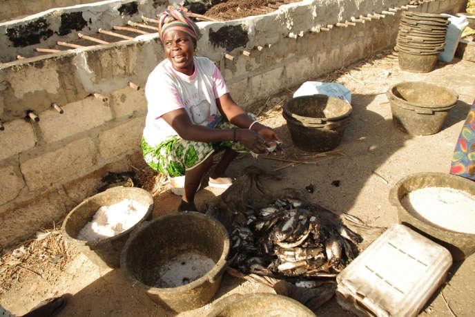 Joal (Sénégal), janvier 2014. Il est impossible pour les femmes qui sèchent et conditionne le poisson de lutter contre la concurrence des usines qui transforment cette ressource en farine pour l'aquaculture d'Asie et d'Europe.